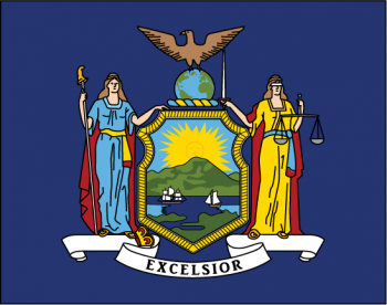 Image result for new york state flag